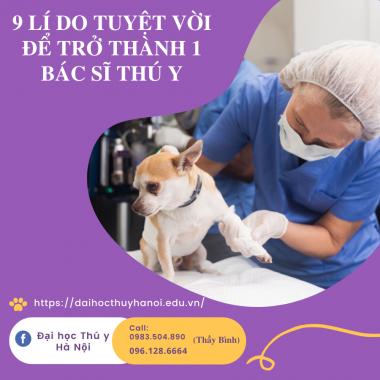 Bác sĩ thú y là một nghề nghiệp tuyệt vời với những ai yêu động vật.