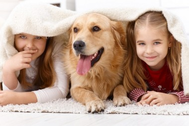 Cảnh giác với những bệnh nguy hiểm được lây từ chó mèo sang người
