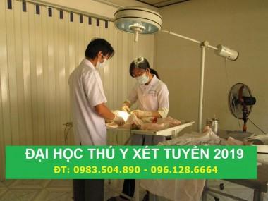 Điều kiện tuyển sinh Đại học Thú Y Hà Nội năm 2019