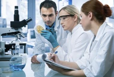 Cơ hội việc làm rộng mở cho bác sĩ thú y