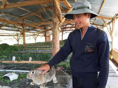 Trở thành triệu phú nhờ nuôi thỏ - Đại học thú y Hà Nội
